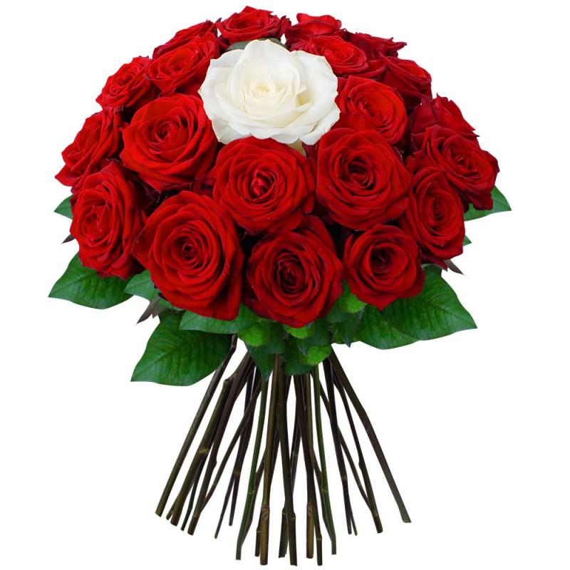 Доставка цветов харькову недорого