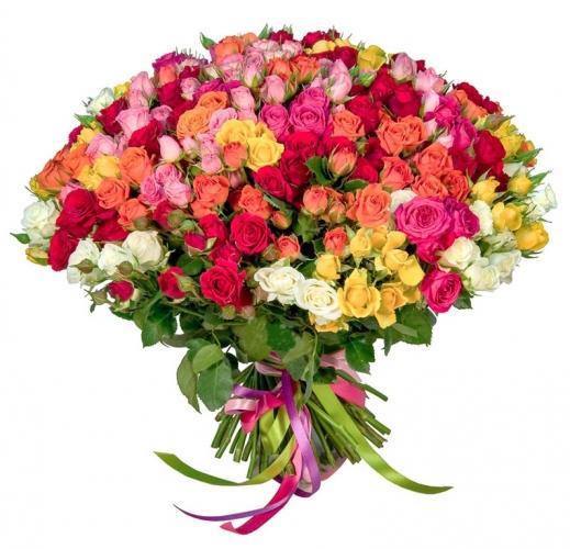 101 ветка кустовой розы