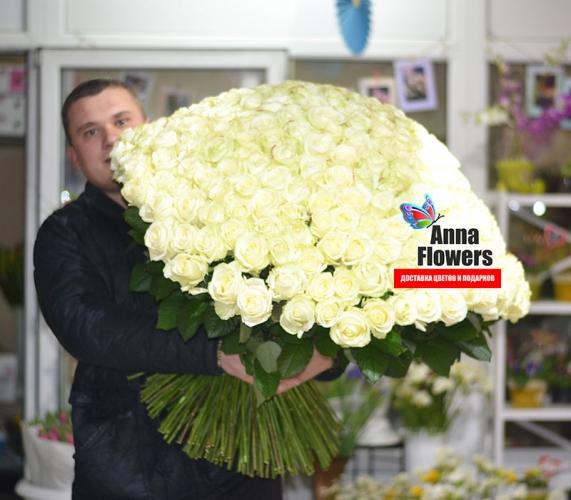 301 роза 80 см