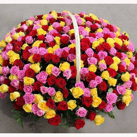 Корзина из 501 разноцветной розы