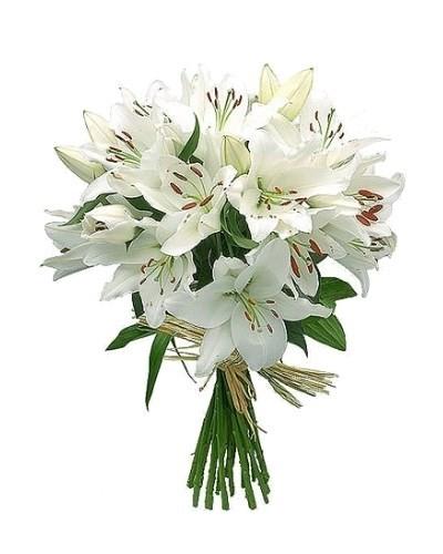 5 веток ароматной белоснежной лилии