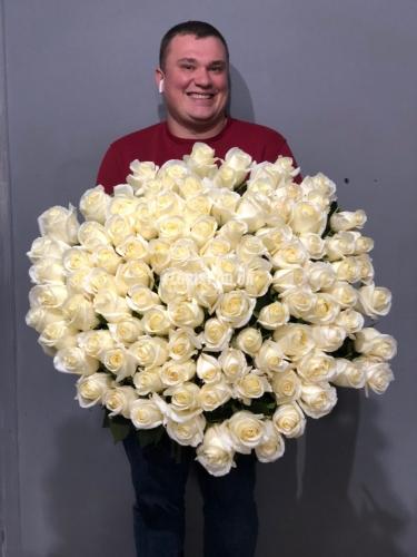 101 высокая белая роза с большими бутонами