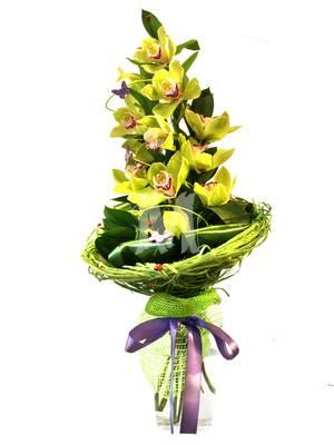 Букет желтых орхидей Восхищение