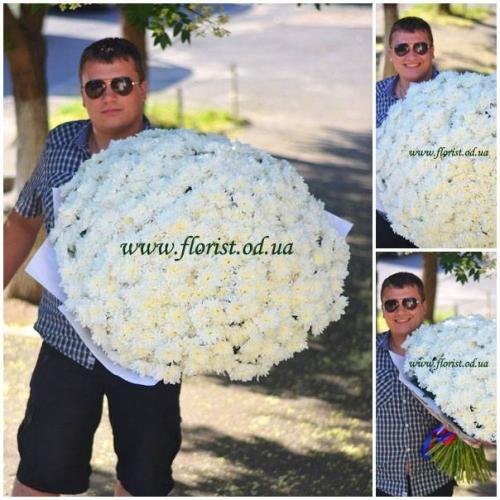 101 ветка хризантемы в букете с Доставкой по Одессе Хризантемный