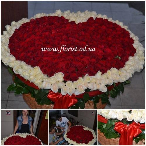 Корзина из 501 розы в форме сердца