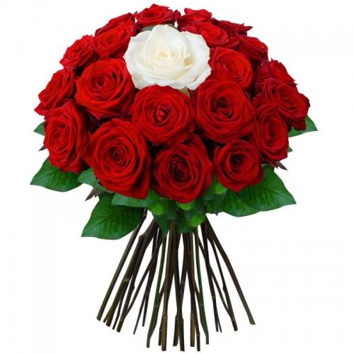 Букет из 25 роз Любимой крохе!