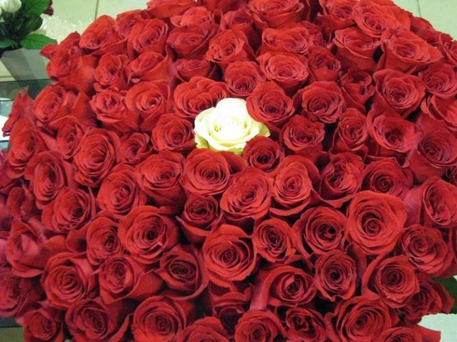 Букет Навсегда (101 роза)
