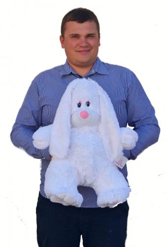 Белый заяц Проша