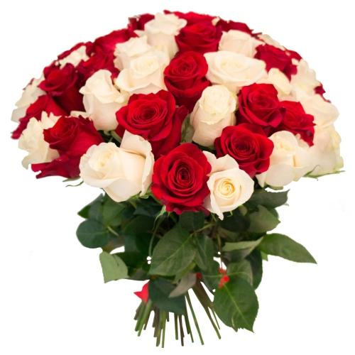 Микс «Белая и красная роза» (25 шт.)