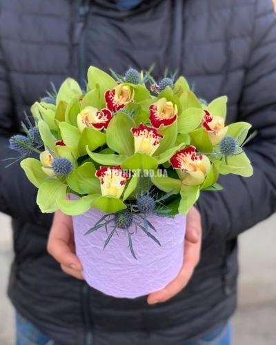 Шляпная коробка с зелеными орхидеями